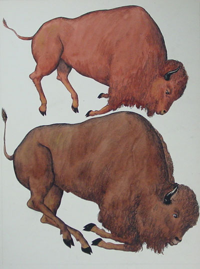water colors of animals